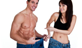 Cissus promotes weight loss