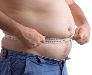 cissus quadrangularis overweight